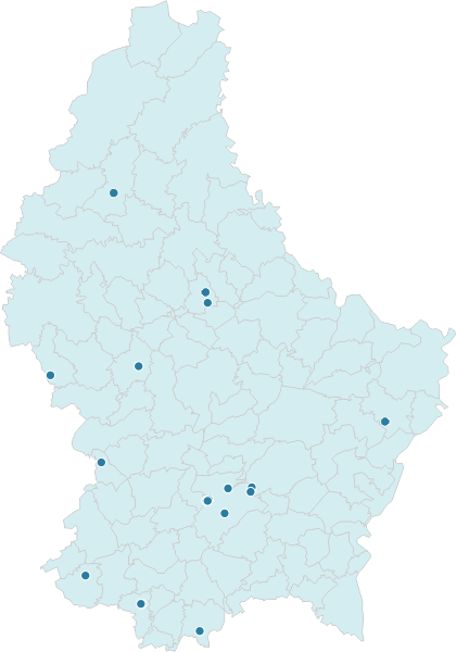 Hospitals and Other Healthcare Services in Luxembourg